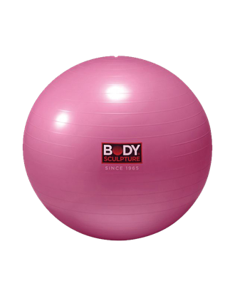 "Picture of 22"" ANTI-BURST GYMBALL/PNK-800GM P3"