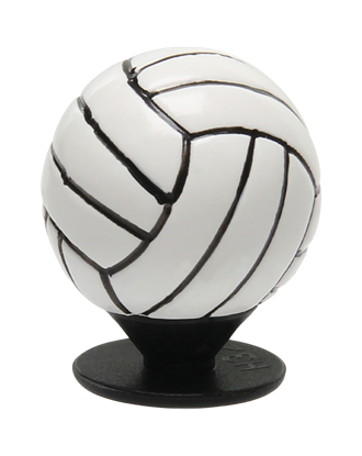 Picture of 3D Volleyball