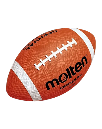 Picture of Molten American Football