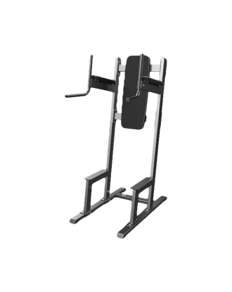 Picture of Eleiko Classic Standing Leg Raise/Dip Station - Charcoal/Black